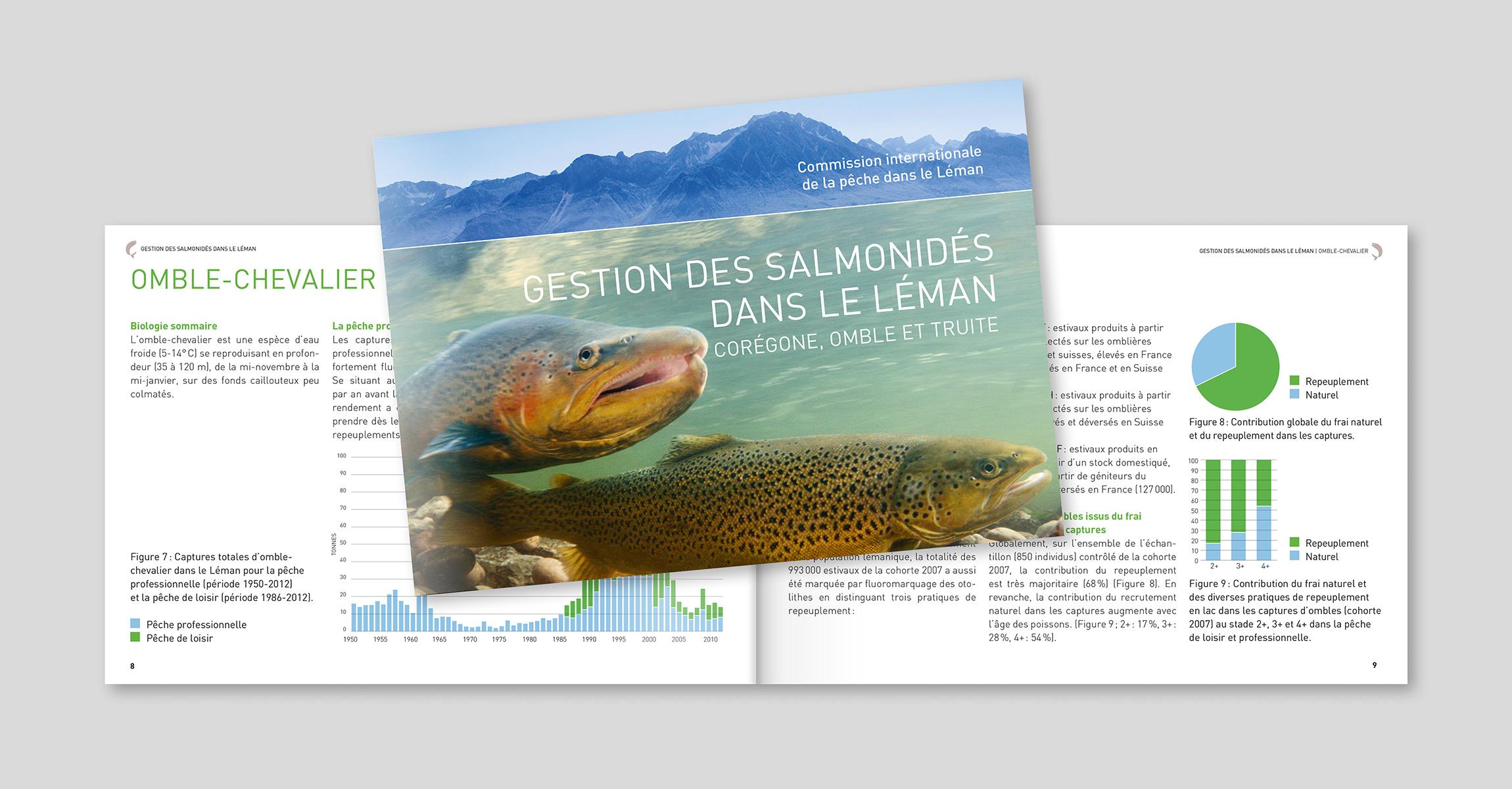 https://www.oikom.ch/wp-content/uploads/2019/08/client_dge_salmon.jpg